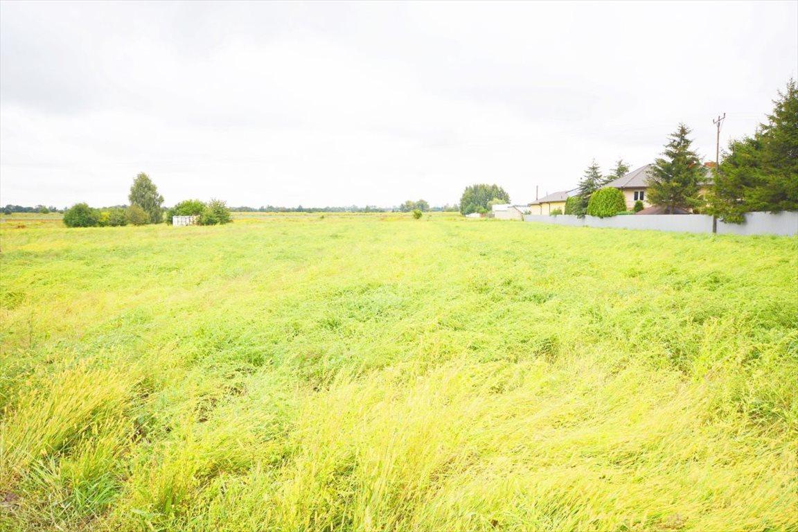 Działka rolna na sprzedaż Sokołów  22600m2 Foto 1