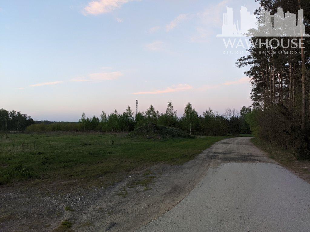 Działka leśna na sprzedaż Wodzinek  24100m2 Foto 4