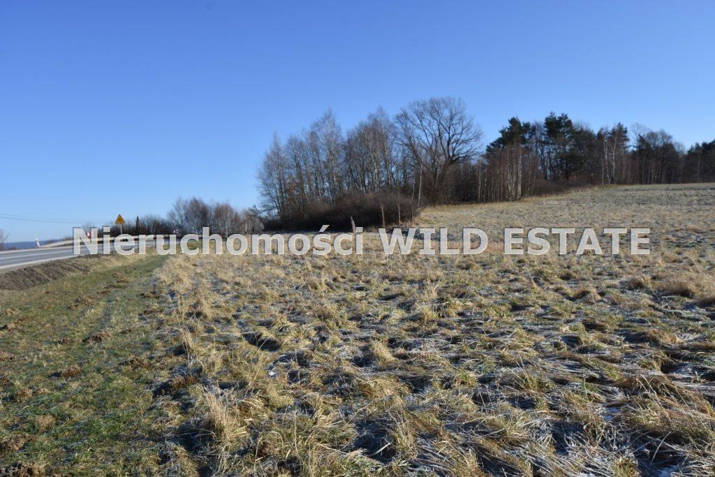 Działka rolna na sprzedaż LESKO, LESKO  8206m2 Foto 3
