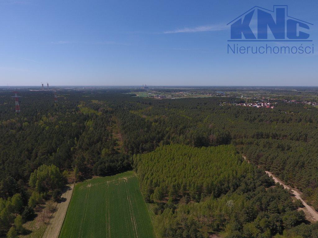 Działka leśna na sprzedaż Laskowiec  5400m2 Foto 5