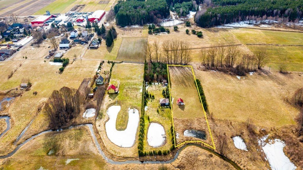 Działka budowlana na sprzedaż Hołówki Małe  5000m2 Foto 4