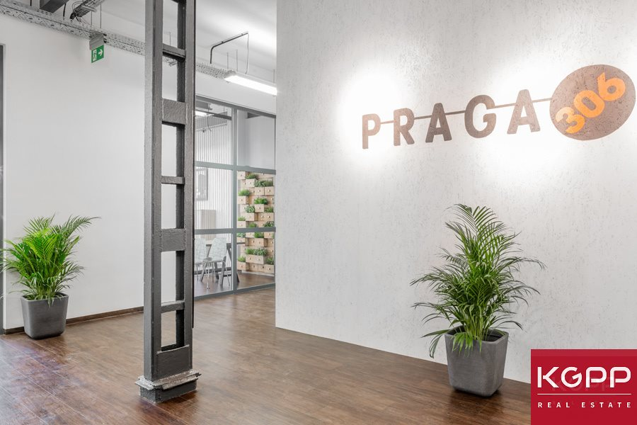 Lokal użytkowy na wynajem Warszawa, Praga-Południe, Kamionek, Grochowska  366m2 Foto 12
