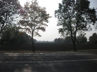 Działka inna na sprzedaż Kazimierzowo, Kazimierzowo  21734m2 Foto 1