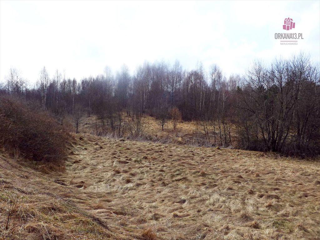 Działka rolna na sprzedaż Radostowo, Radostowo  108251m2 Foto 10