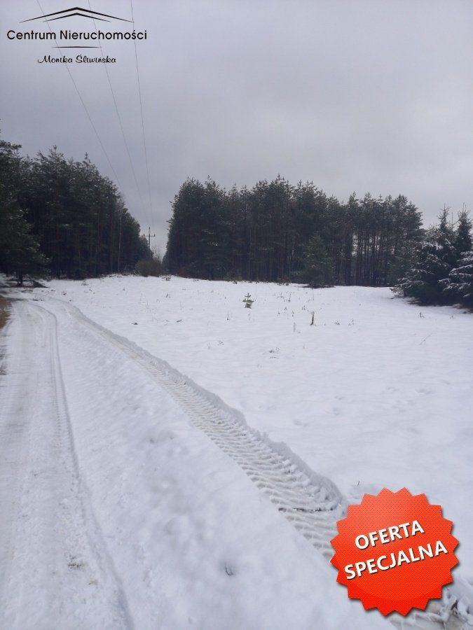 Działka leśna na sprzedaż Zawada  3110m2 Foto 2