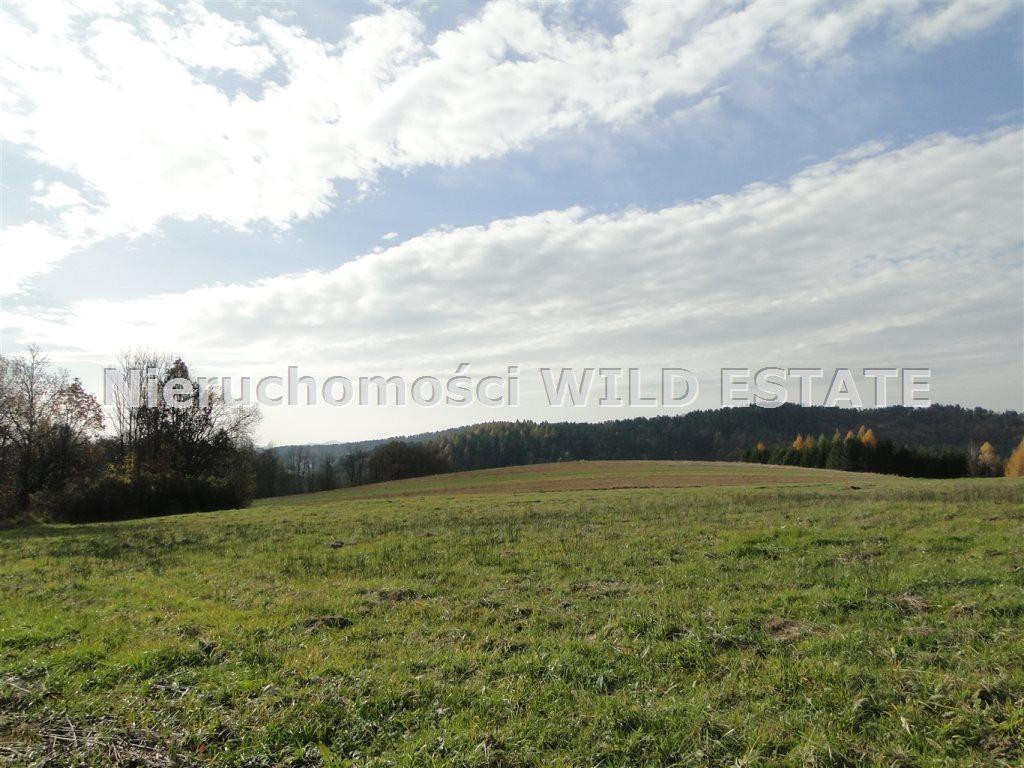 Działka rolna na sprzedaż Solina, Berezka  10398m2 Foto 8