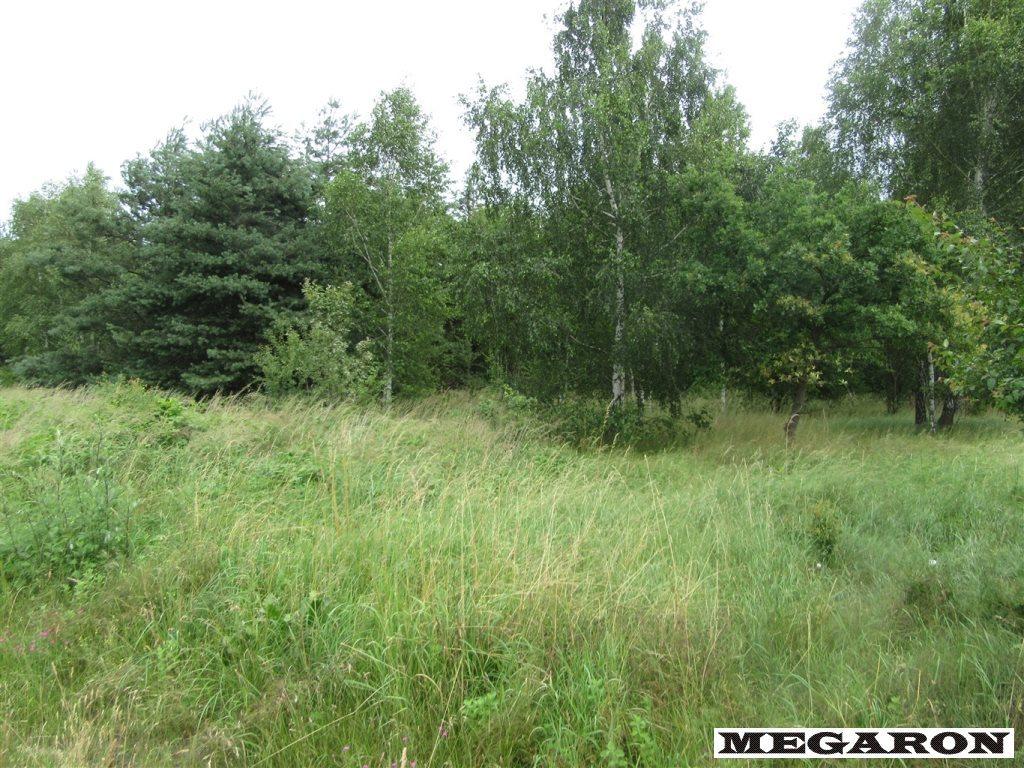 Działka leśna na sprzedaż Rzerzęczyce  25401m2 Foto 7