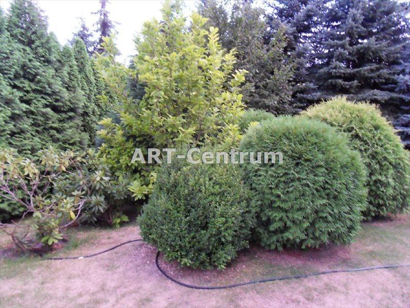 Lokal użytkowy na sprzedaż Toruń, Wrzosy  385m2 Foto 1