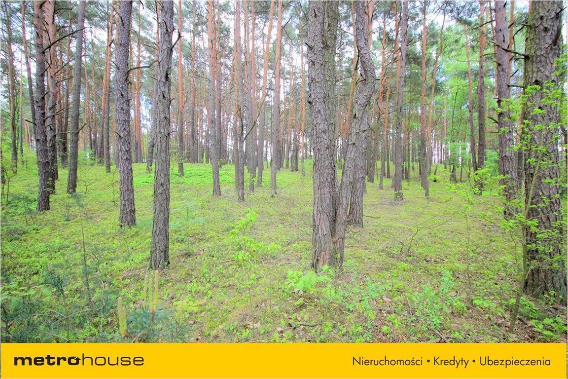 Działka rekreacyjna na sprzedaż Ldzań, Dobroń  4300m2 Foto 2