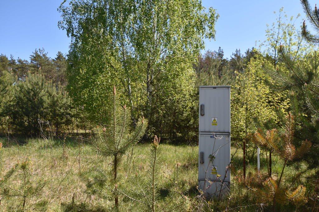 Działka rolna na sprzedaż Czyżemin  3100m2 Foto 1
