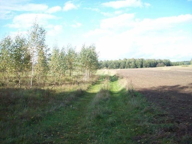 Działka rolna na sprzedaż Janowicze  3001m2 Foto 3
