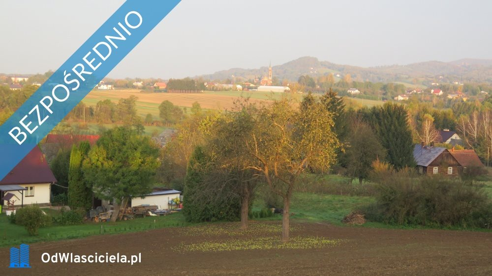Działka rolna na sprzedaż Korczyna, Łąkowa  4600m2 Foto 4