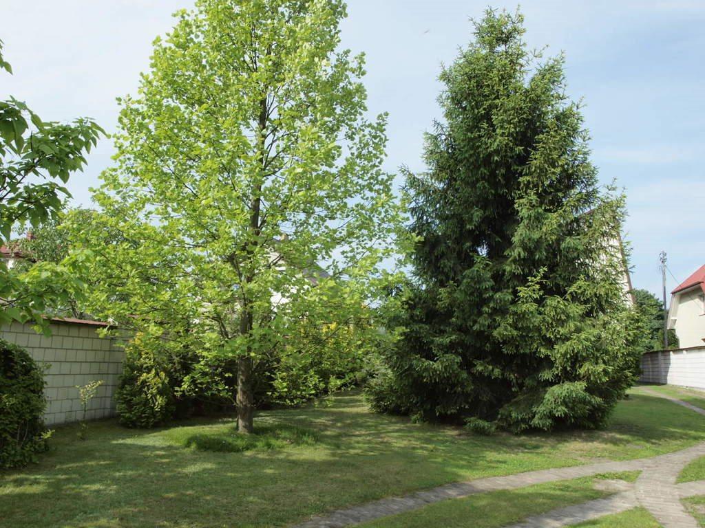 Dom na sprzedaż Biała Podlaska, Łomaska  198m2 Foto 10