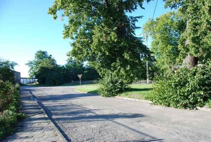 Działka budowlana pod dzierżawę Osłonino, leśna  530m2 Foto 8
