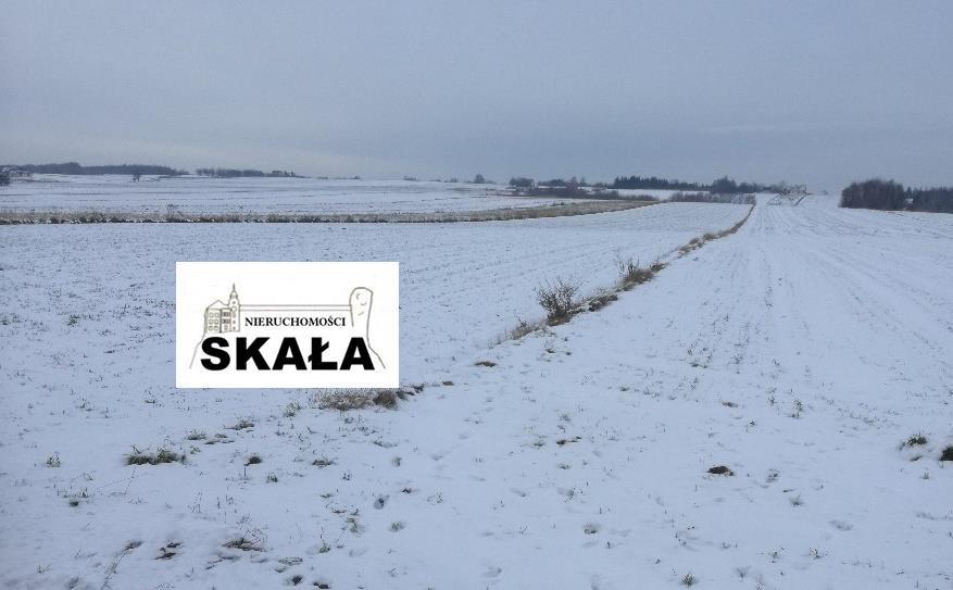 Działka rolna na sprzedaż Sułkowice  3800m2 Foto 3