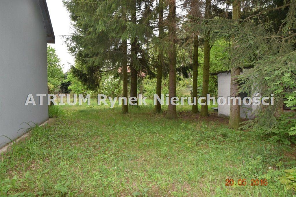 Działka budowlana na sprzedaż Głowno  3384m2 Foto 2