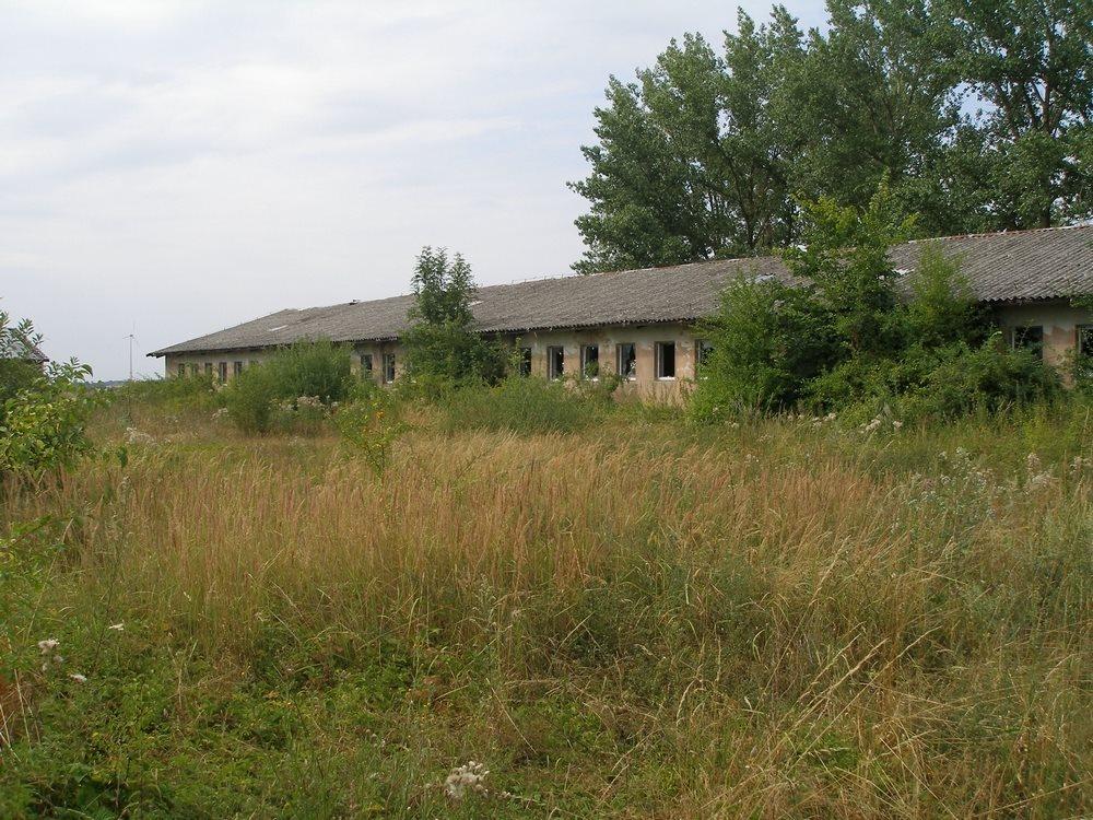Magazyn na sprzedaż Kołbaskowo  827m2 Foto 2