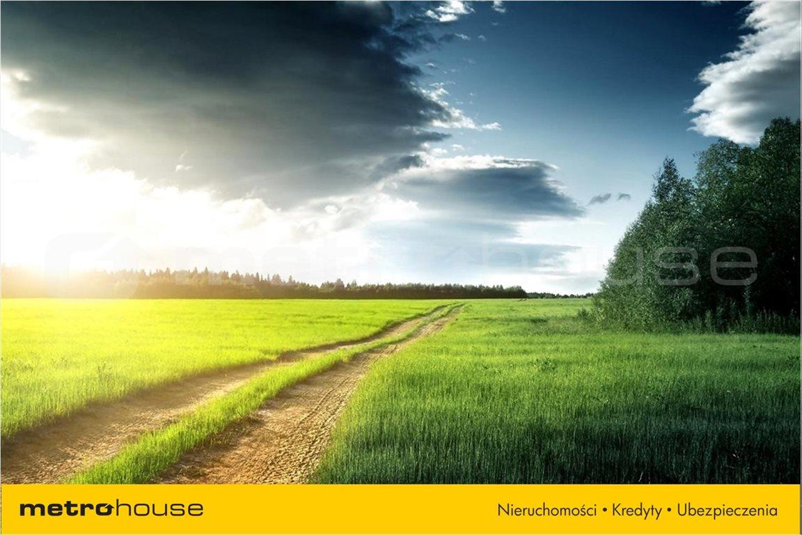 Działka rolna na sprzedaż Budziska, Halinów  34973m2 Foto 2