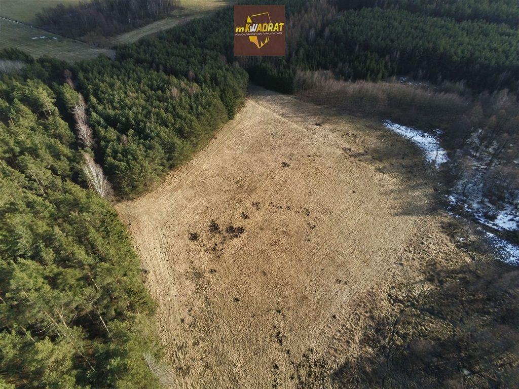 Działka leśna na sprzedaż Drygały  24200m2 Foto 4