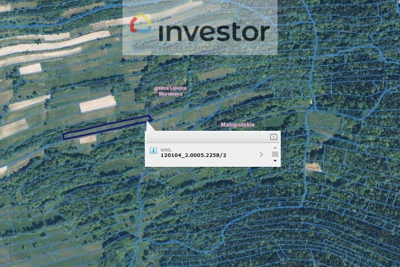 Działka rolna na sprzedaż Rajbrot  30300m2 Foto 8