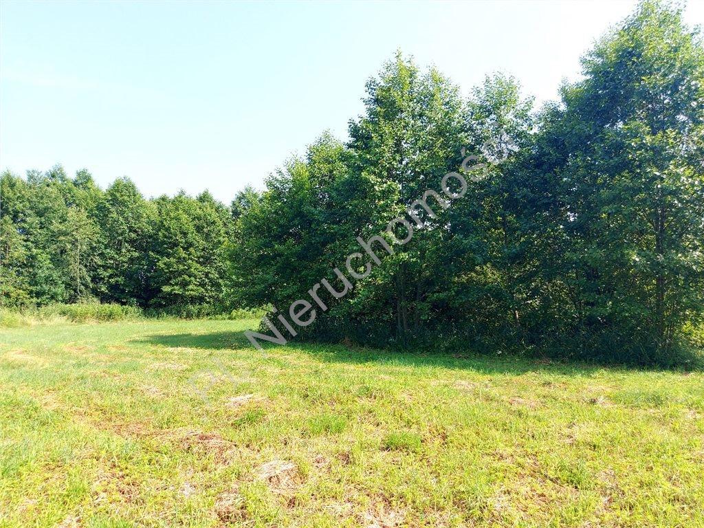 Działka rolna na sprzedaż Ruda  4516m2 Foto 6