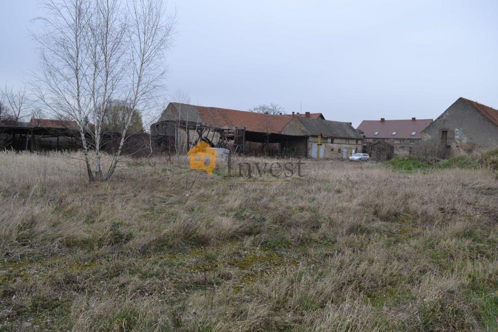 Działka budowlana na sprzedaż Prusice  6902m2 Foto 3