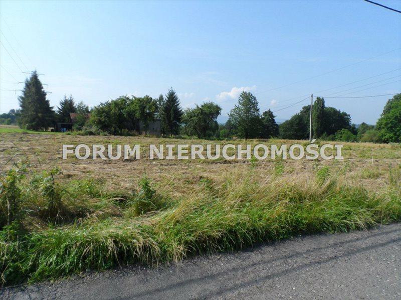 Działka budowlana na sprzedaż Bielsko-Biała, Komorowice Krakowskie  3500m2 Foto 6