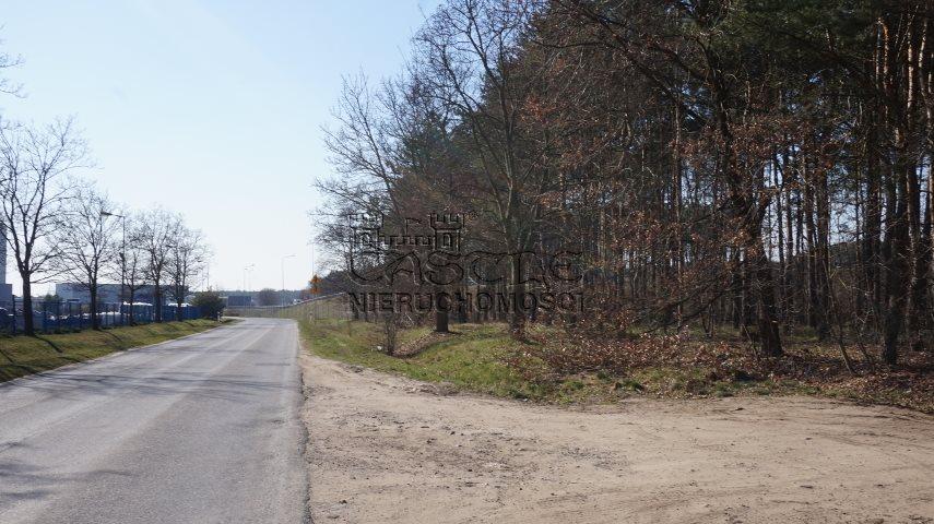 Działka inwestycyjna na sprzedaż Dąbrowa, Bukowska/Pasjonatów  3806m2 Foto 5