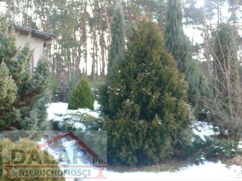 Działka budowlana na sprzedaż Chynów, Grobice Nowe  3526m2 Foto 13