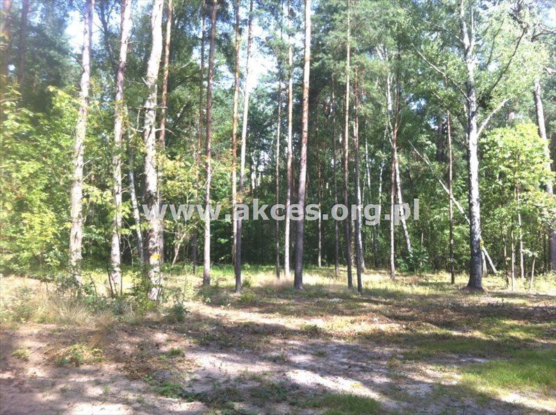 Działka inna na sprzedaż Sękocin Stary, Sękocin-Las  2100m2 Foto 3