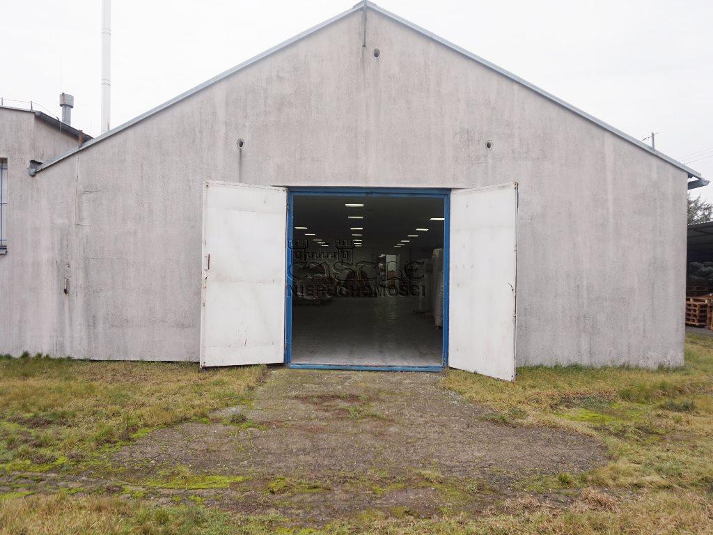 Lokal użytkowy na sprzedaż Czerniejewo  1250m2 Foto 4