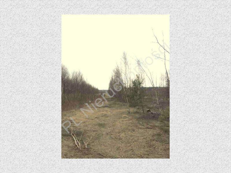 Działka rolna na sprzedaż Stanisławów  8300m2 Foto 3