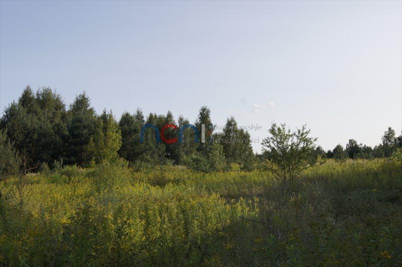 Działka budowlana na sprzedaż Wymysły  3664m2 Foto 3