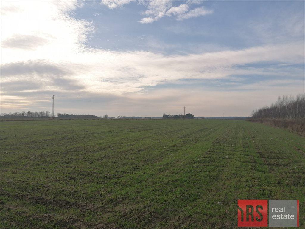Działka rolna na sprzedaż Nowa Wrona  3000m2 Foto 1