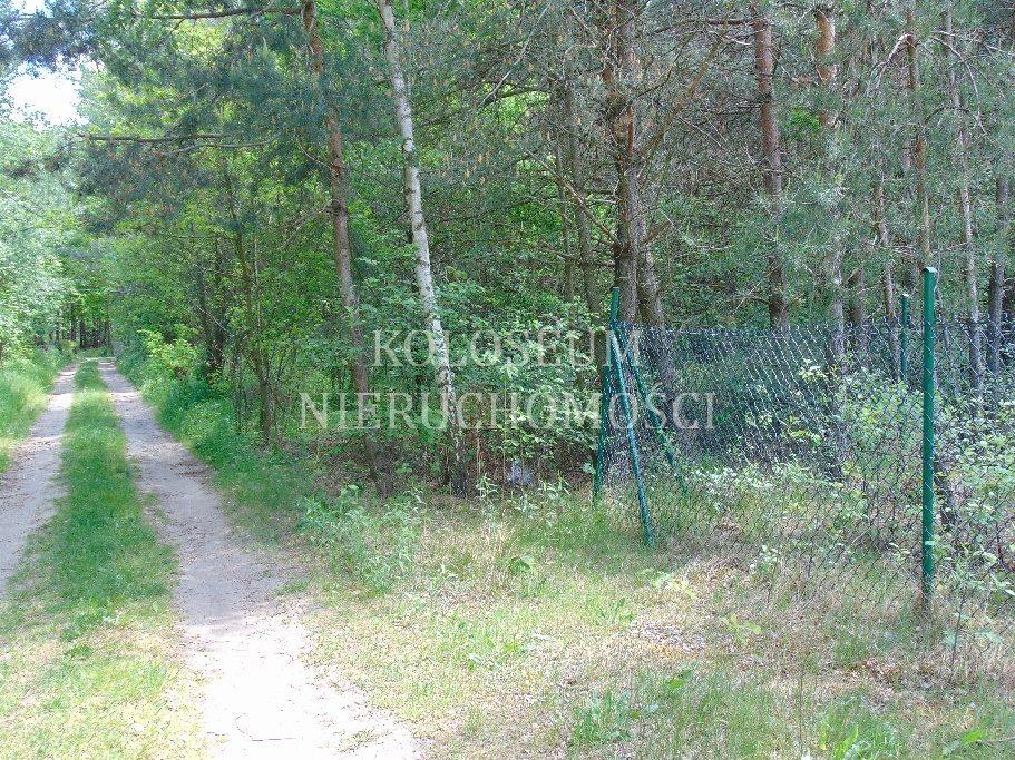Działka rekreacyjna na sprzedaż Biała  1300m2 Foto 3