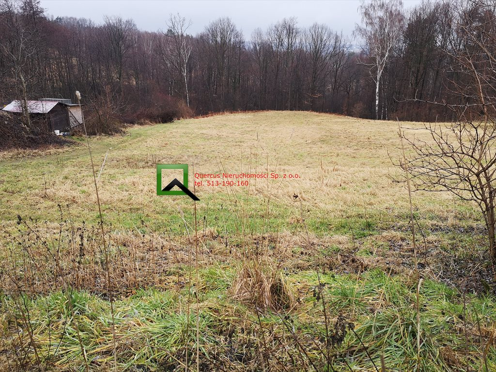 Działka budowlana na sprzedaż Byszyce  3223m2 Foto 2