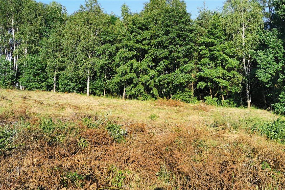 Działka budowlana na sprzedaż Balice, Zabierzów  1100m2 Foto 2