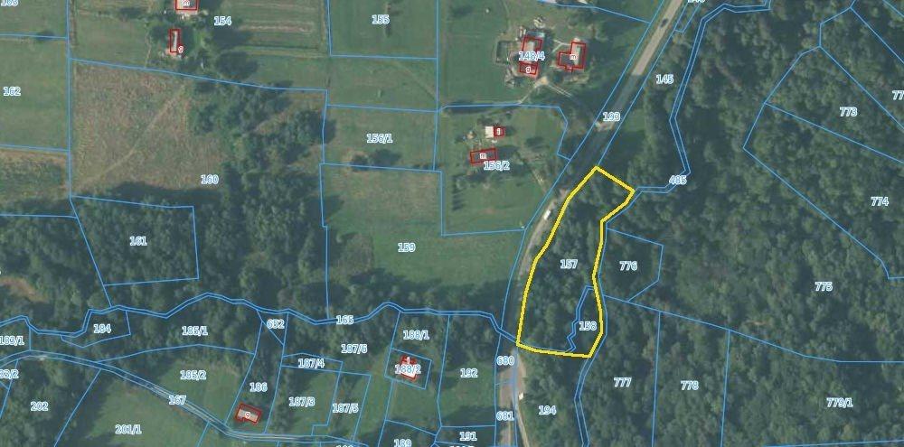 Działka leśna na sprzedaż Borówna  3600m2 Foto 5