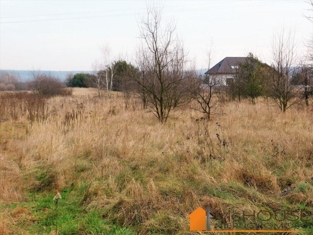 Działka rolna na sprzedaż Baranów Sandomierski, Fabryczna  970m2 Foto 4