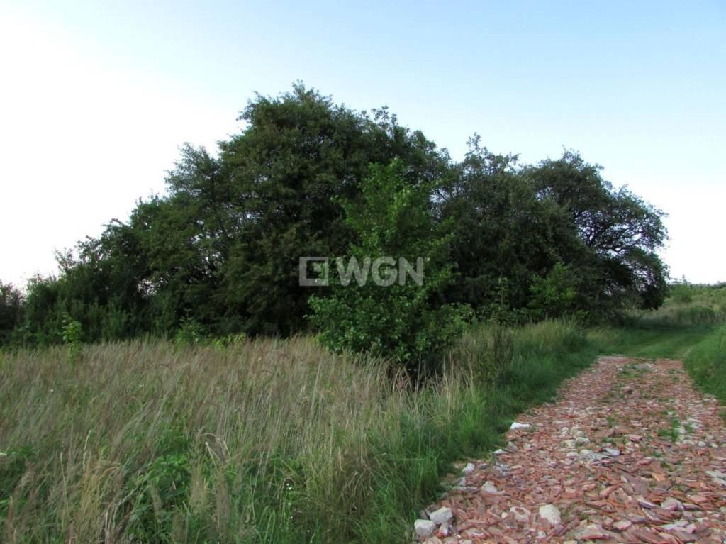 Działka rolna na sprzedaż Handzlówka, Handzlówka, Handzlówka  11387m2 Foto 5