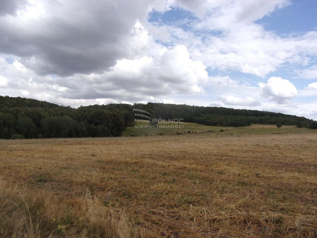 Działka rolna pod dzierżawę Płóczki Górne  800000m2 Foto 4