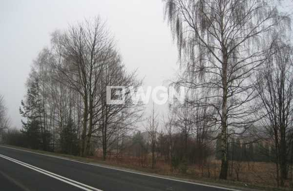 Działka inna na sprzedaż Chrzanów, Kąty, Śląska  3540m2 Foto 1