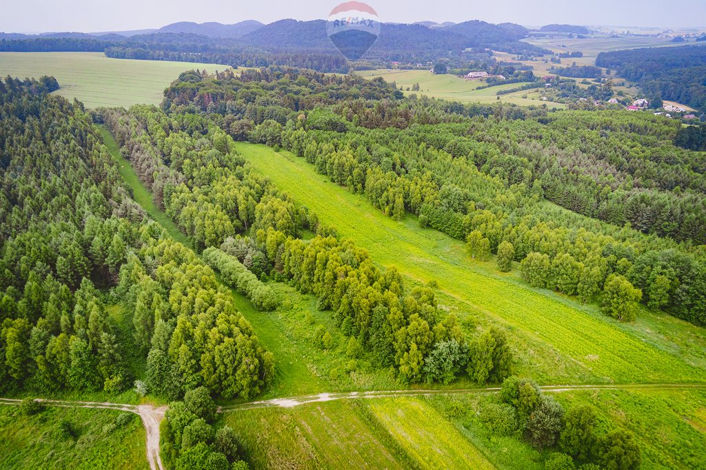 Działka rolna na sprzedaż Załęże  32873m2 Foto 6