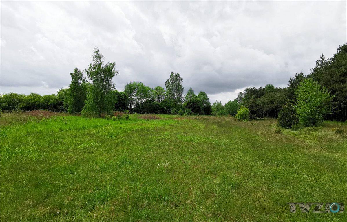 Działka rolna na sprzedaż Warszówka  12200m2 Foto 3