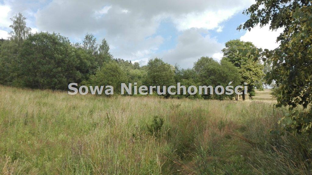 Działka inna na sprzedaż Mieroszów, okolice Mieroszowa  14209m2 Foto 4