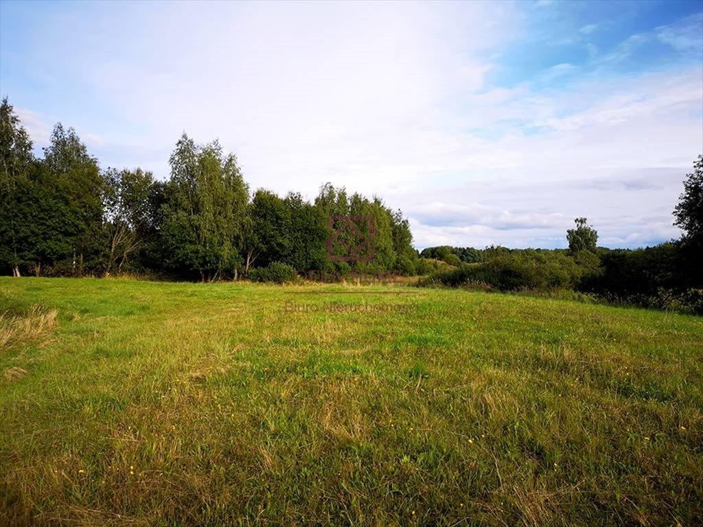 Działka rolna na sprzedaż Kosewo, Nasielsk  2000m2 Foto 5