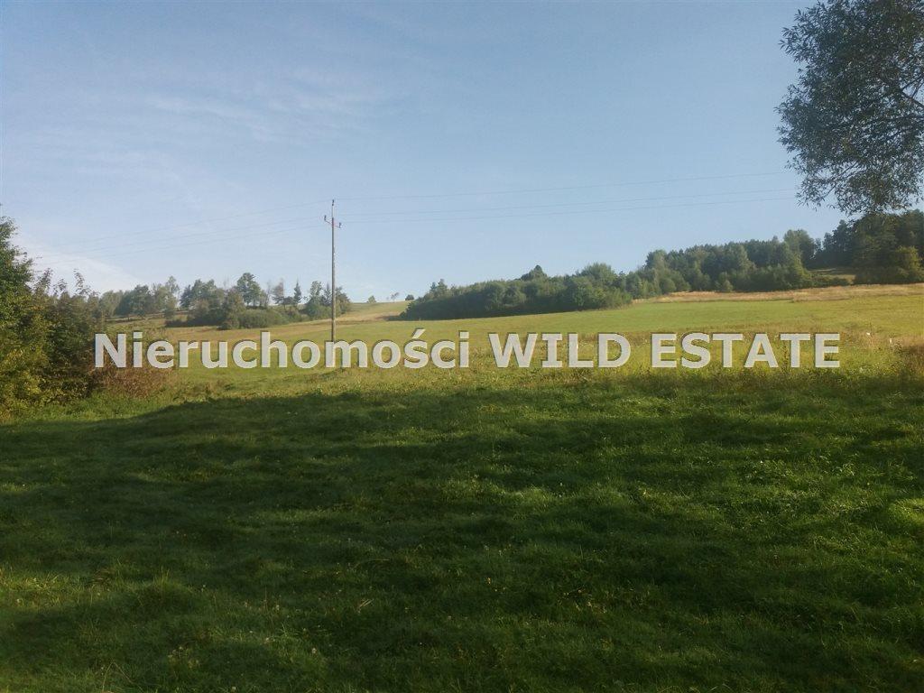 Działka rolna na sprzedaż Olszanica, Paszowa  10100m2 Foto 1