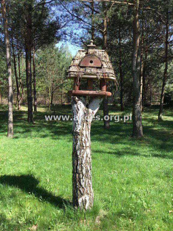 Dom na sprzedaż Łoś, Łoś  75m2 Foto 8