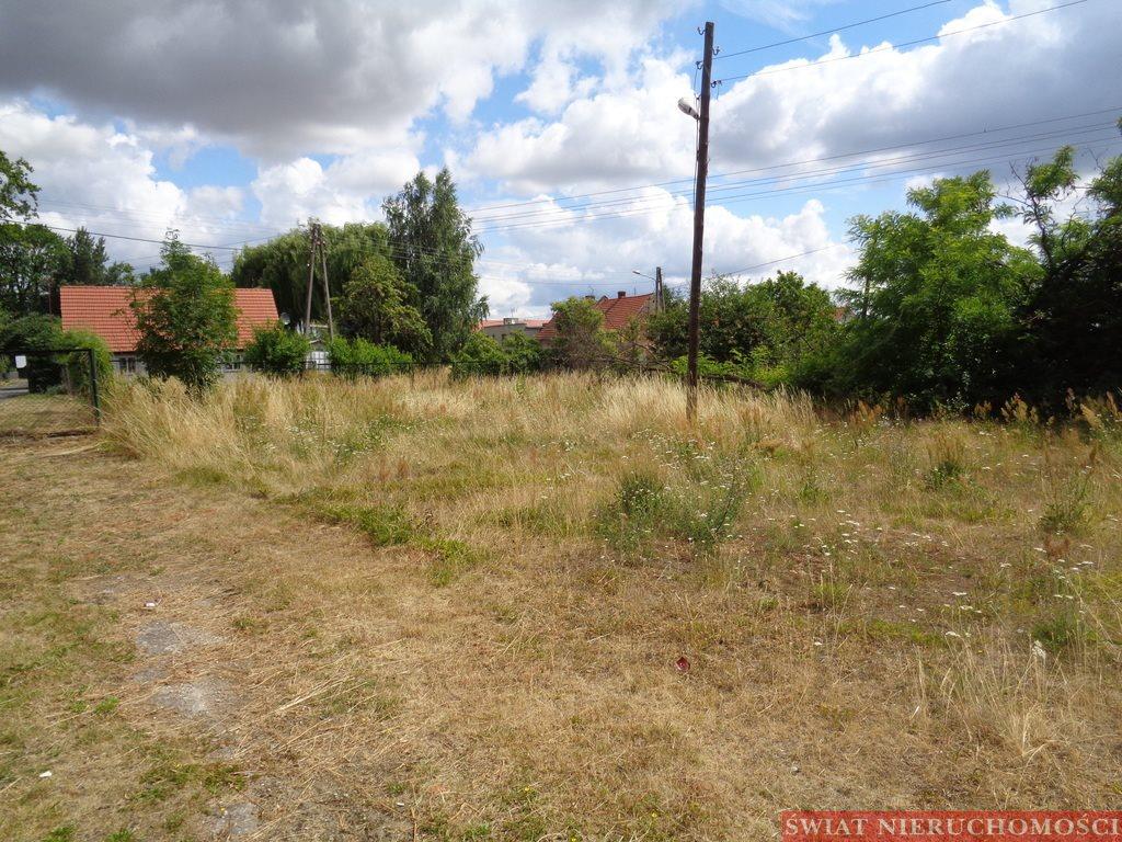 Lokal użytkowy na sprzedaż Prusice  6900m2 Foto 8