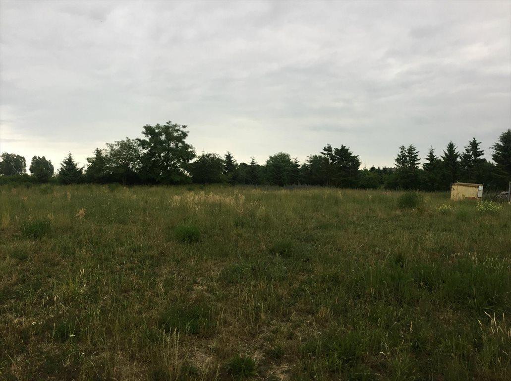 Działka budowlana na sprzedaż Rewa, Wałowa  1114m2 Foto 5